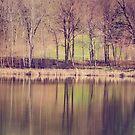 Spring Reflected by KBritt
