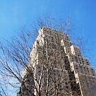 Urban Eye in New York 6 by Moniquitacute