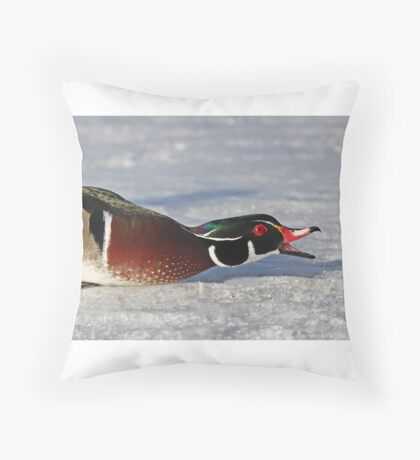 Protecting his territory - Wood Duck Throw Pillow