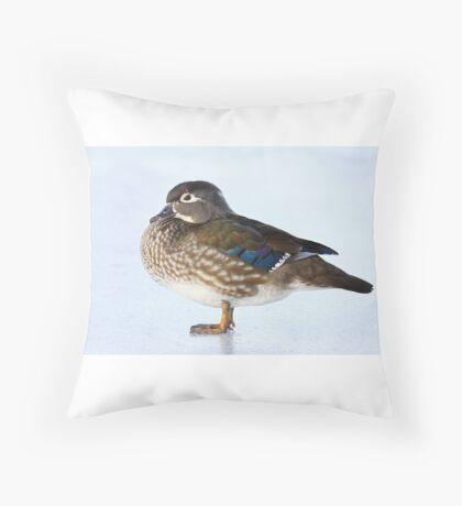 My favourite duck - Wood Duck Throw Pillow