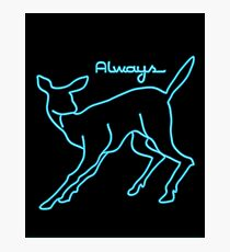 Always Neon Photographic Print