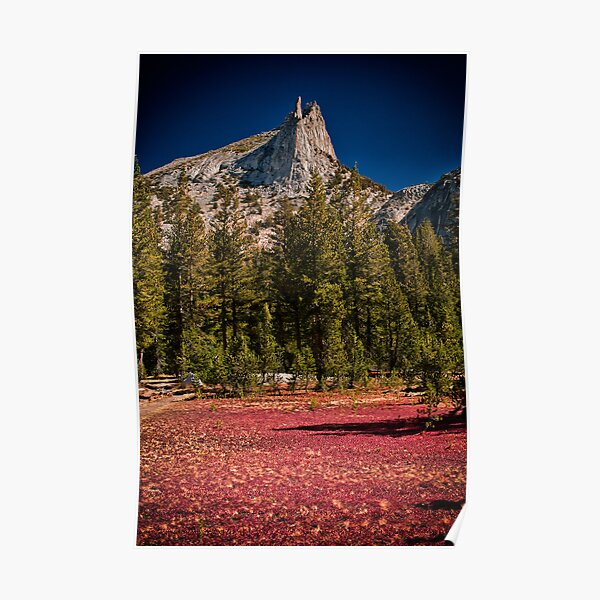 Cathedral Peak Poster