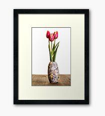 Spring Tulip Flowers Framed Print