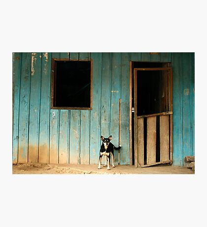 The Amazon 210 Photographic Print