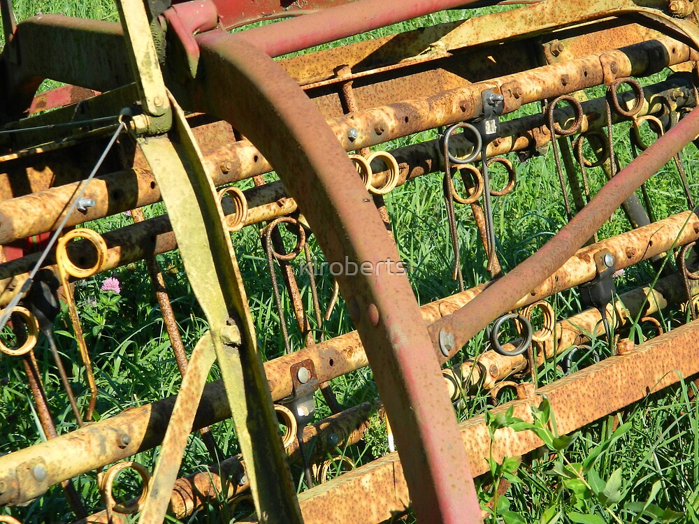 Rusted Farm Relic by klroberts