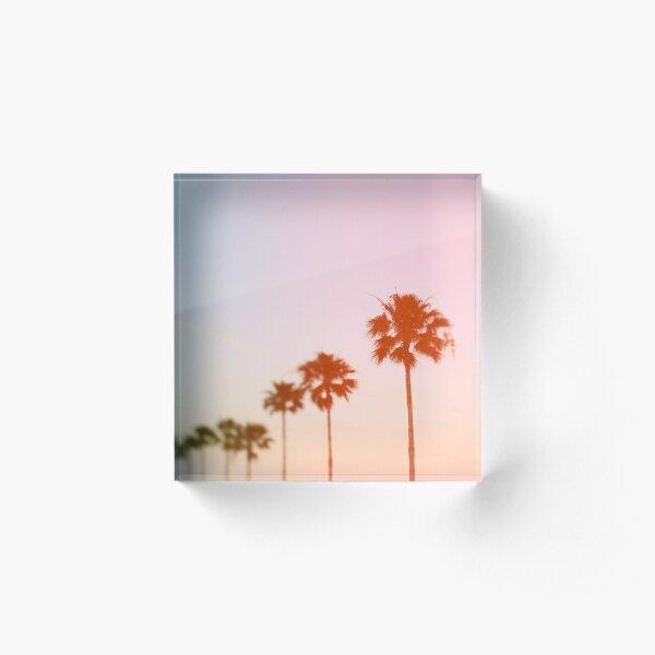 Summer Palms Acrylic Block