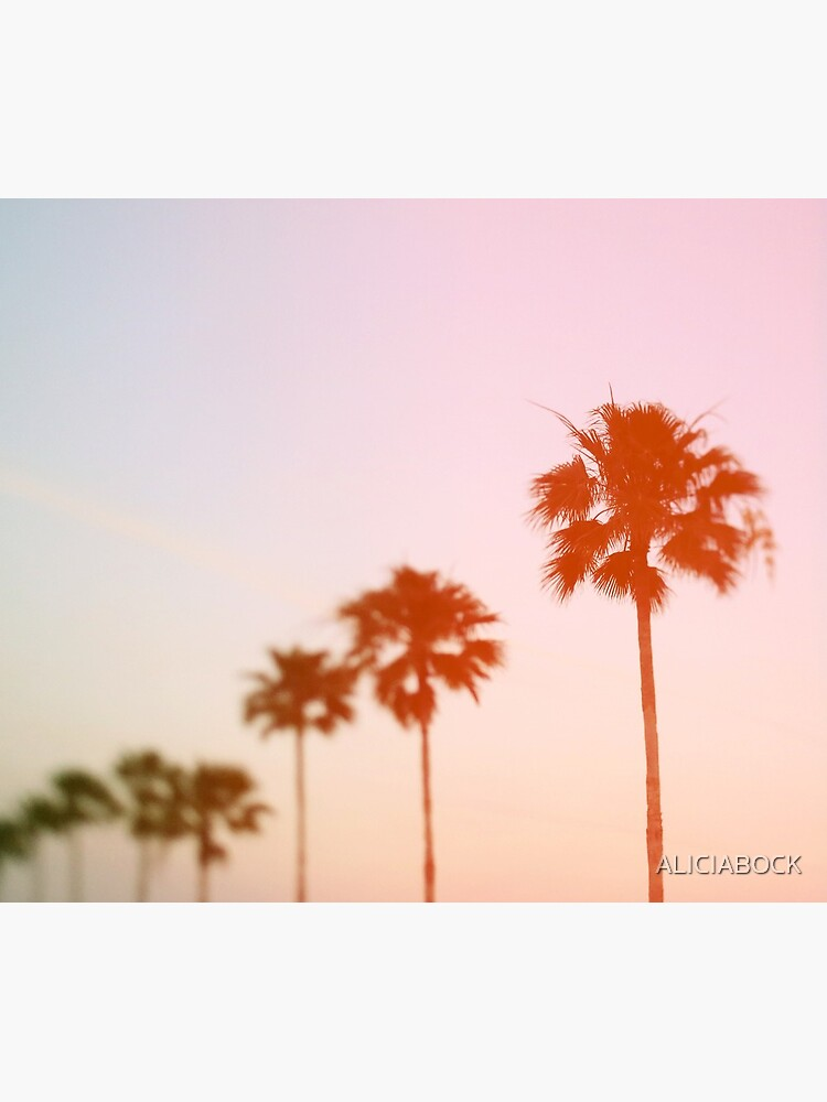 Summer Palms by ALICIABOCK