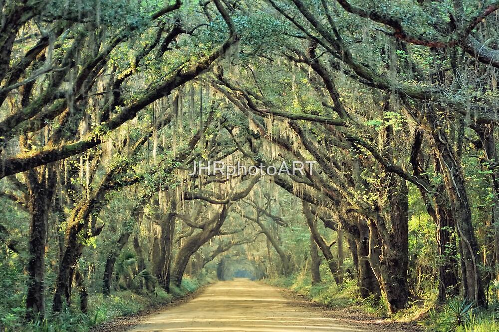 Botany Bay Road  by JHRphotoART