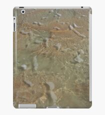 Mingle iPad Case/Skin