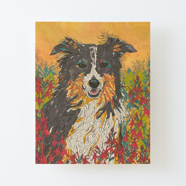 Border Collie Canvas Mounted Print