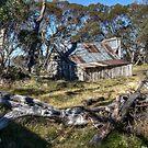 Wallace's Hut 1 by djzontheball