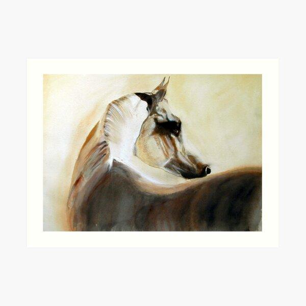 Mystical Arabian Art Print