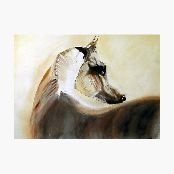 Mystical Arabian Photographic Print