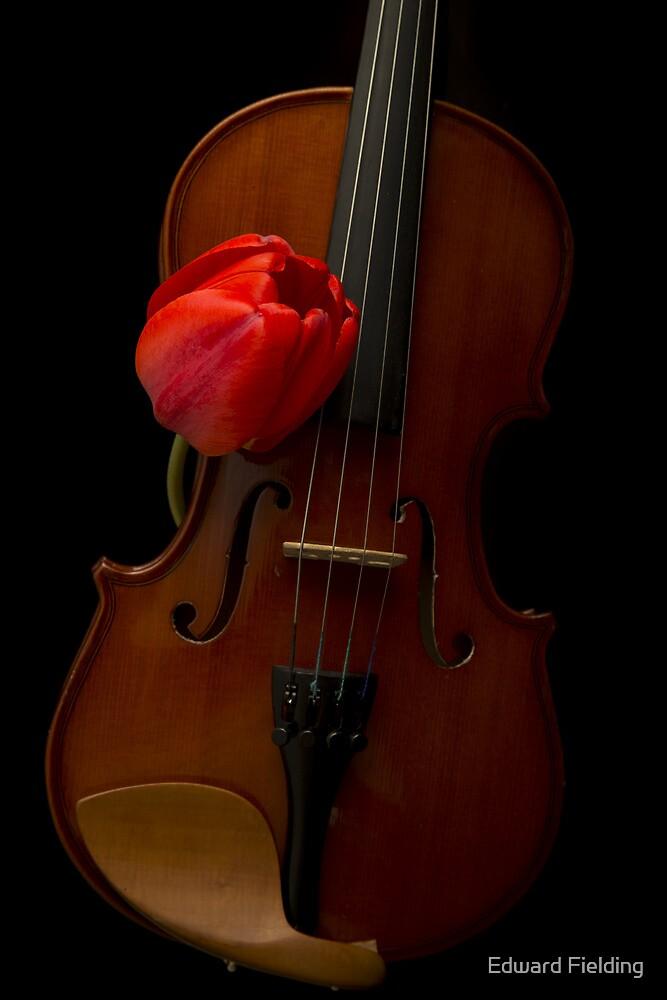 Music Lover by Edward Fielding