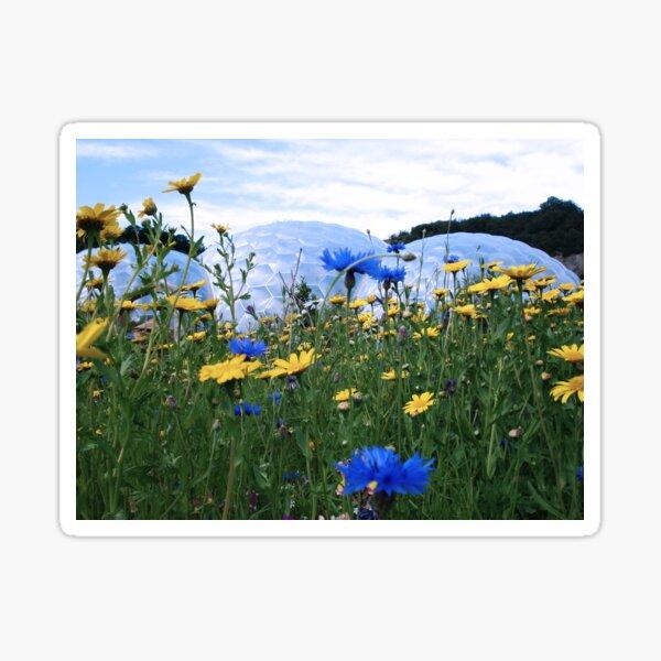 Eden Meadow Sticker