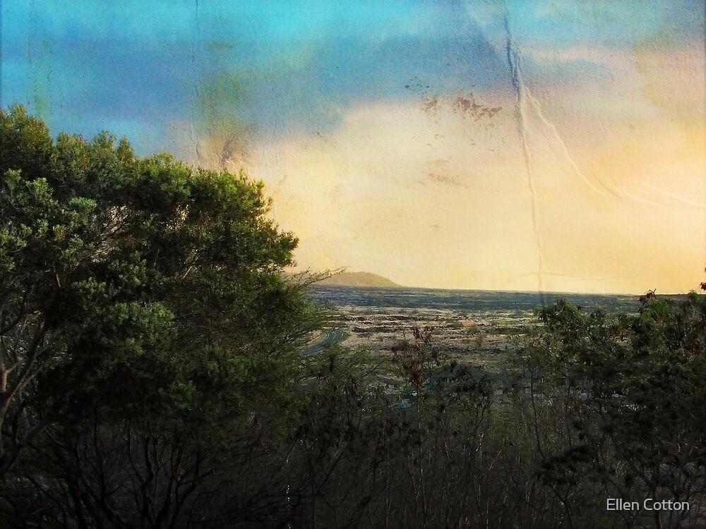 Dusk in Waikoloa #2 by Ellen Cotton