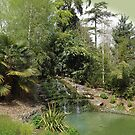The secret garden by beracox
