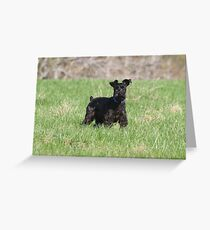 Barney Greeting Card
