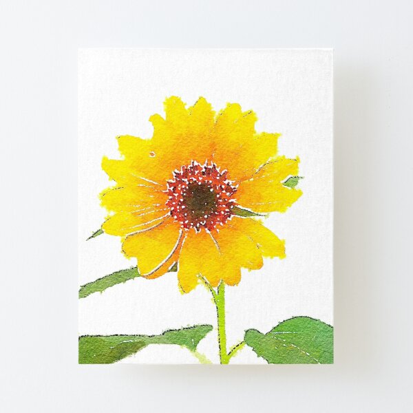 Sunflower in Watercolor Canvas Mounted Print
