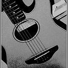 Fender by Fiona Gardner