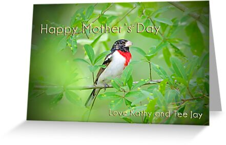 Happy Mothers Day Card by TJ Baccari Photography