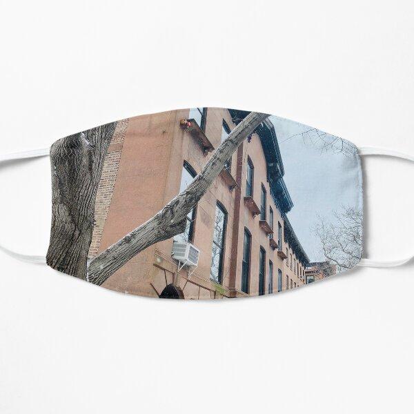 Brooklyn Winter Flat Mask