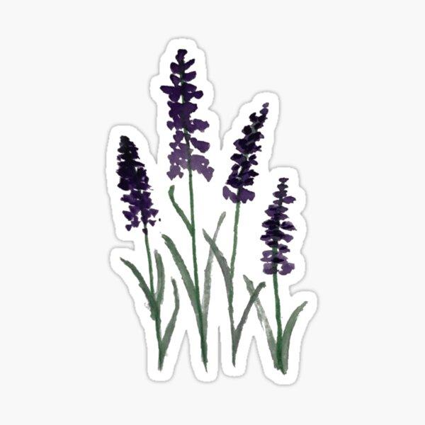 Watercolor Lavender Sticker