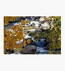 Carson River I Photographic Print
