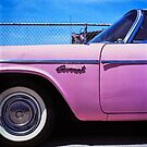 Pink Coronet by Patrick T. Power