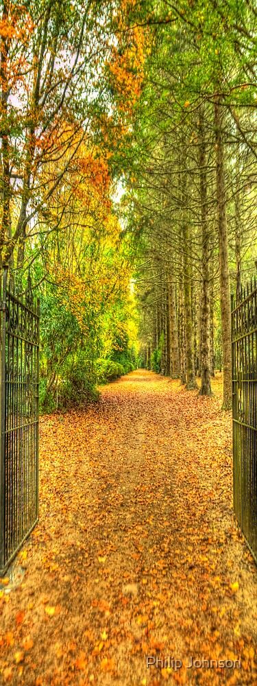 What Lies Beyond The Gates ? - Breenhold- Mount Wilson NSW - The HDR EXPERIENCE by Philip Johnson