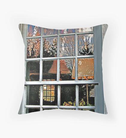 Window, Dey Mansion, Wayne NJ  Throw Pillow