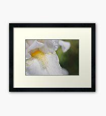 Silky Soft Framed Print