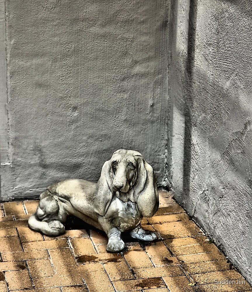 Dog In Corner by SuddenJim
