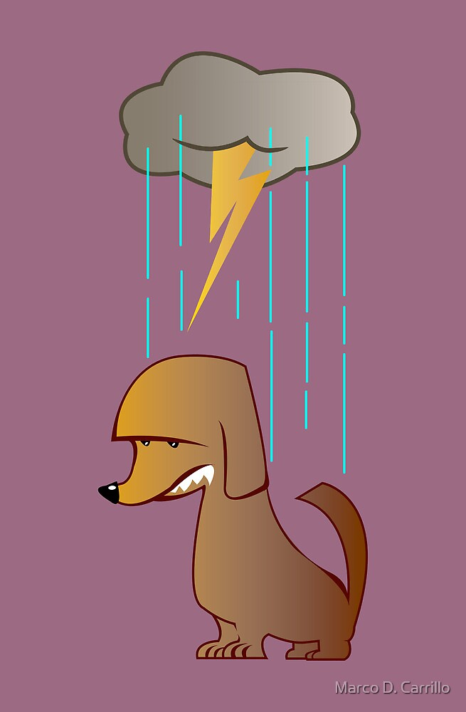 Bad Luck Dog by Marco D. Carrillo