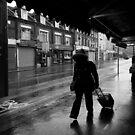 New Arrival by John Hooton