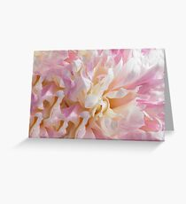 Pretty Peony 2 Greeting Card
