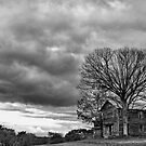 Lonely house B&W by Penny Rinker