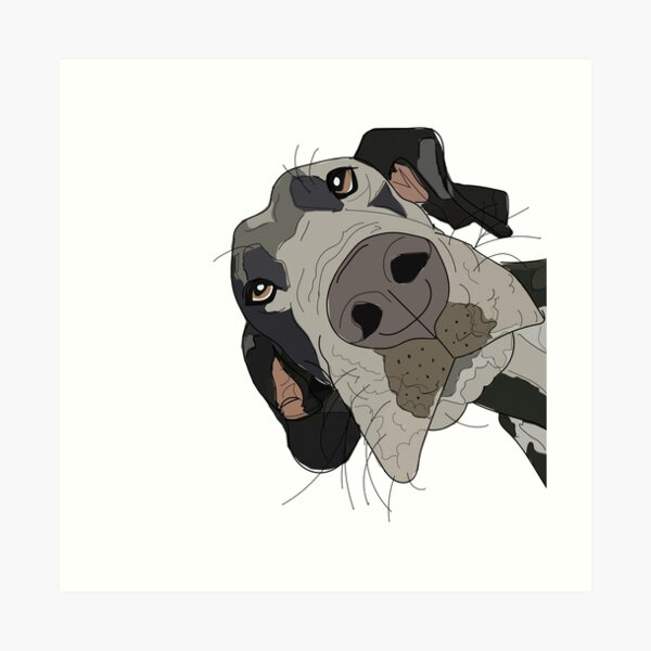 Great Dane In Your Face Dog Art Print