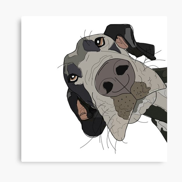 Great Dane In Your Face Dog Canvas Print
