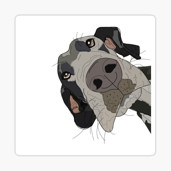 Great Dane In Your Face Dog Sticker