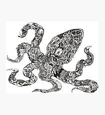 Aorta VI Squid Photographic Print