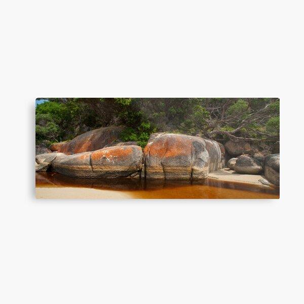 Tidal River, Wilsons Promontory National Park Metal Print