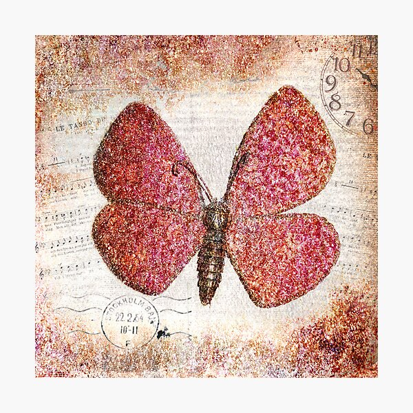 Free like a butterfly Photographic Print