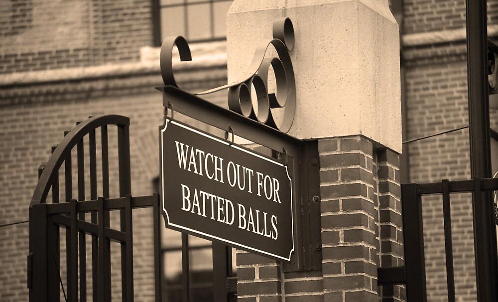 Baseball Warning by Frank Romeo