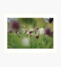 Meadow at Downton Abbey Art Print