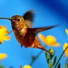 HUMMINGBIRD IN THE FLOWERS by RoseMarie747