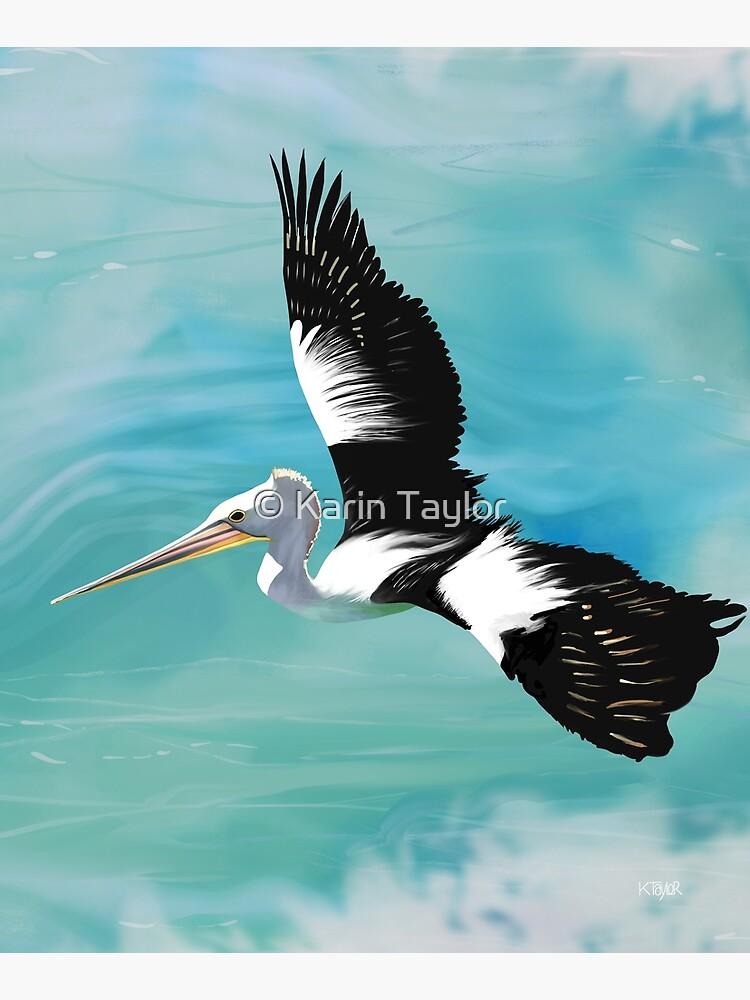 Pelican Crossing by karin