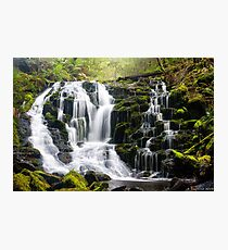 Olivia Creek Cascades  Photographic Print