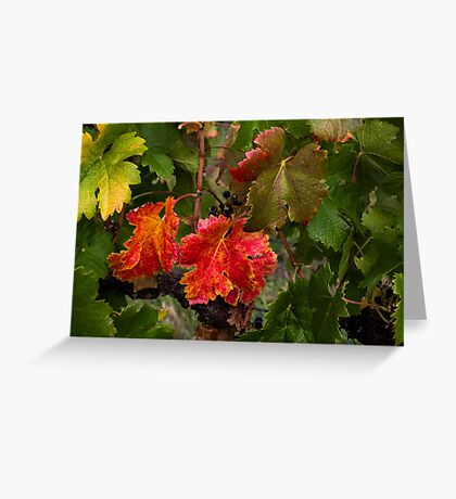 Red and Green Vines Greeting Card