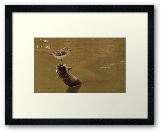 Gone Fishing by Thomas Murphy